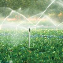 防除・灌水資材