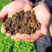 肥料・培養土・活力剤