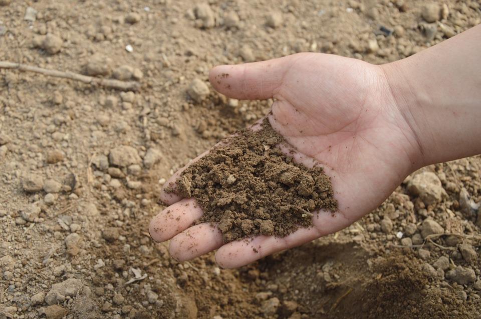 肥料・用土